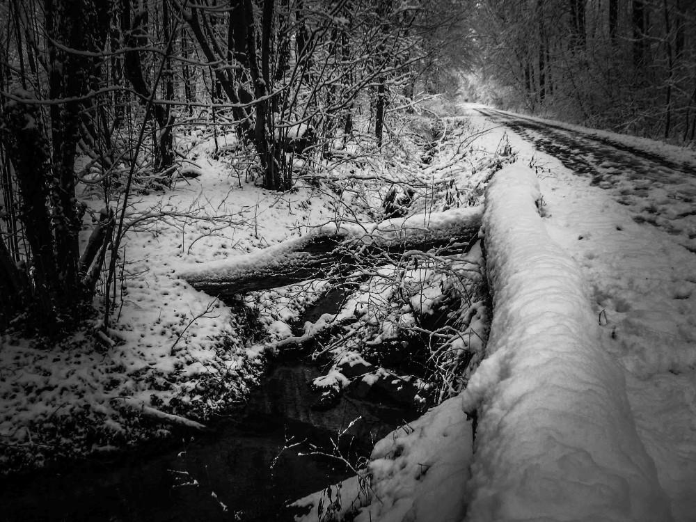 Most w zimie